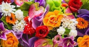 flowers-flores-em-inglês-940x627